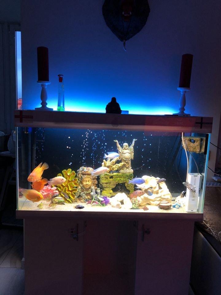 Светодиодная лампа для аквариума повышенной яркости